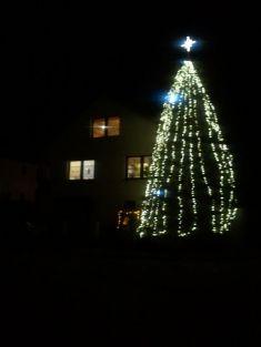 Sportovní 460, vánoční strom
